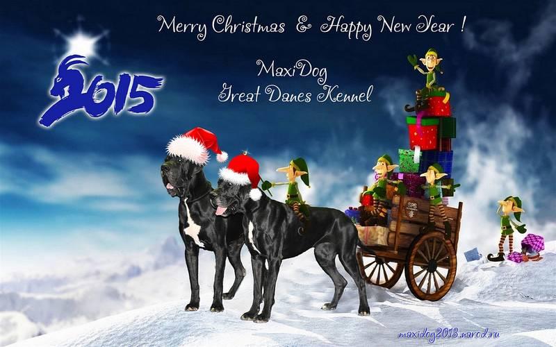 С Новым Годом!!! PD8lE