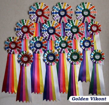 Наградные розетки на заказ от Golden Vikont - Страница 7 Gmzx5