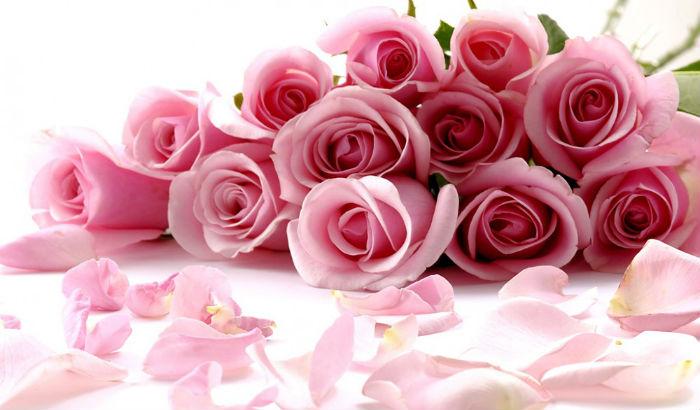 [Artikull] Tek varri i nënës Lule-i
