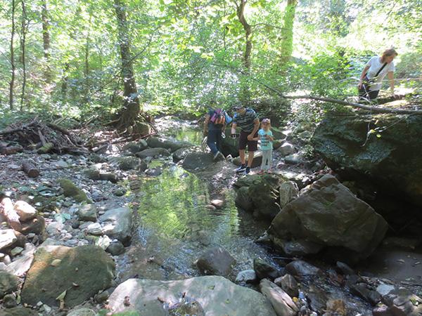Экспедиции к выпаривателям родниковой воды - Страница 33 Figurnye_otverstiya_img_6632