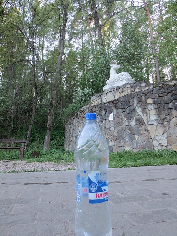 Экспедиции к выпаривателям родниковой воды - Страница 27 Odintsovo_img_3959
