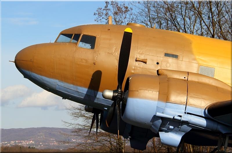 Avijatičarski spomenici  Img1493