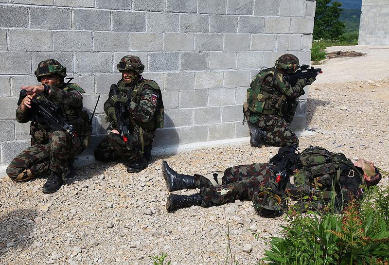 Slovenian Armed Forces / Slovenska vojska 3