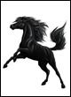 Popis trgovin in predmetov Hadaraski-vranec