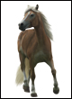 Popis trgovin in predmetov Vlecni-konj