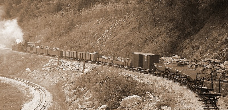 Šumska željeznica Raka Raka40