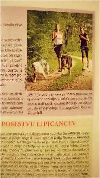 Kjara Kocbek Animal Photography - Page 2 Dsc0016x