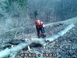 Izrada ogrijevnog drva - Page 22 Fotografija-0052