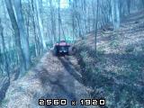 Šumski putevi Fotografija-0054