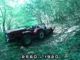 Šumski putevi Fotografija-0003