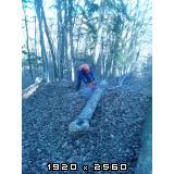 Izrada ogrijevnog drva - Page 13 Fotografija-0005