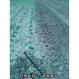 Pan agra freza 125cm Fotografija-0010