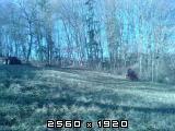 Izrada ogrijevnog drva - Page 13 Fotografija-0012