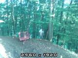 Prometne nesreće sa traktorima    - Page 2 Fotografija-0034