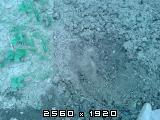 Pan agra freza 125cm Fotografija-0011