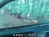 Prometne nesreće sa traktorima    - Page 2 Fotografija-0035