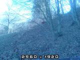 Izrada ogrijevnog drva - Page 13 Fotografija-0014