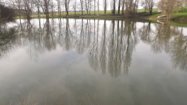 avis location d'étang 137z1y