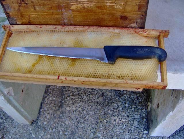 Quel type de couteau à désoperculer utilisez vous ? Tmehd1