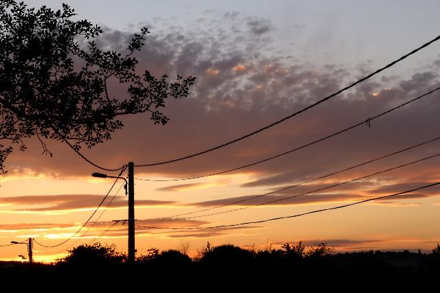 Mes photos ... Nature Macro 81wbgh
