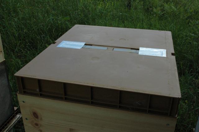 Faire un chasse abeilles avec un nourrisseur Nicot en 10mn- test  31195v
