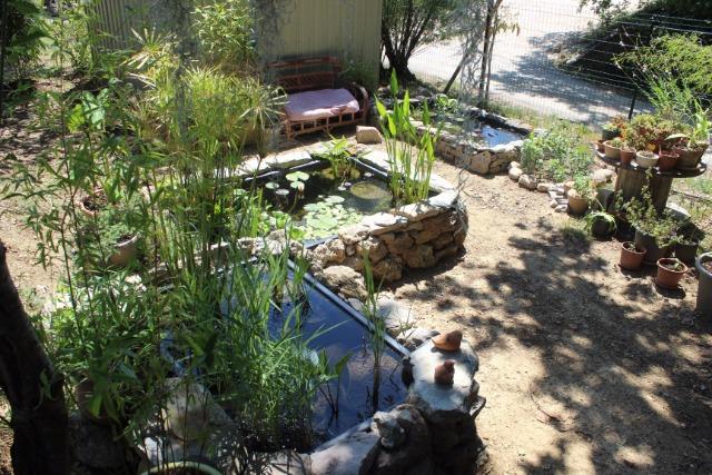 Mon p'tit jardin 088yk9