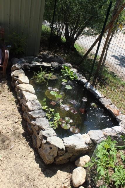 Mon p'tit jardin 08o1ml