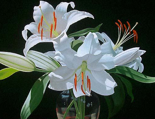 Легенды о цветах Lilium22