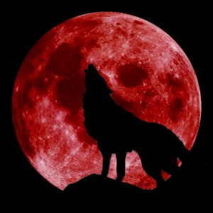 The Full Wolf Moon will Coincide with a Lunar Eclipse this Week Blood-moon-with-wolf-300x300