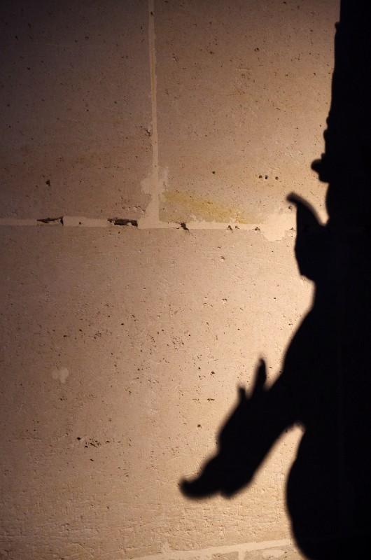 Chateau de Pierrefond 14 novembre 2010 - Page 3 07_ombre