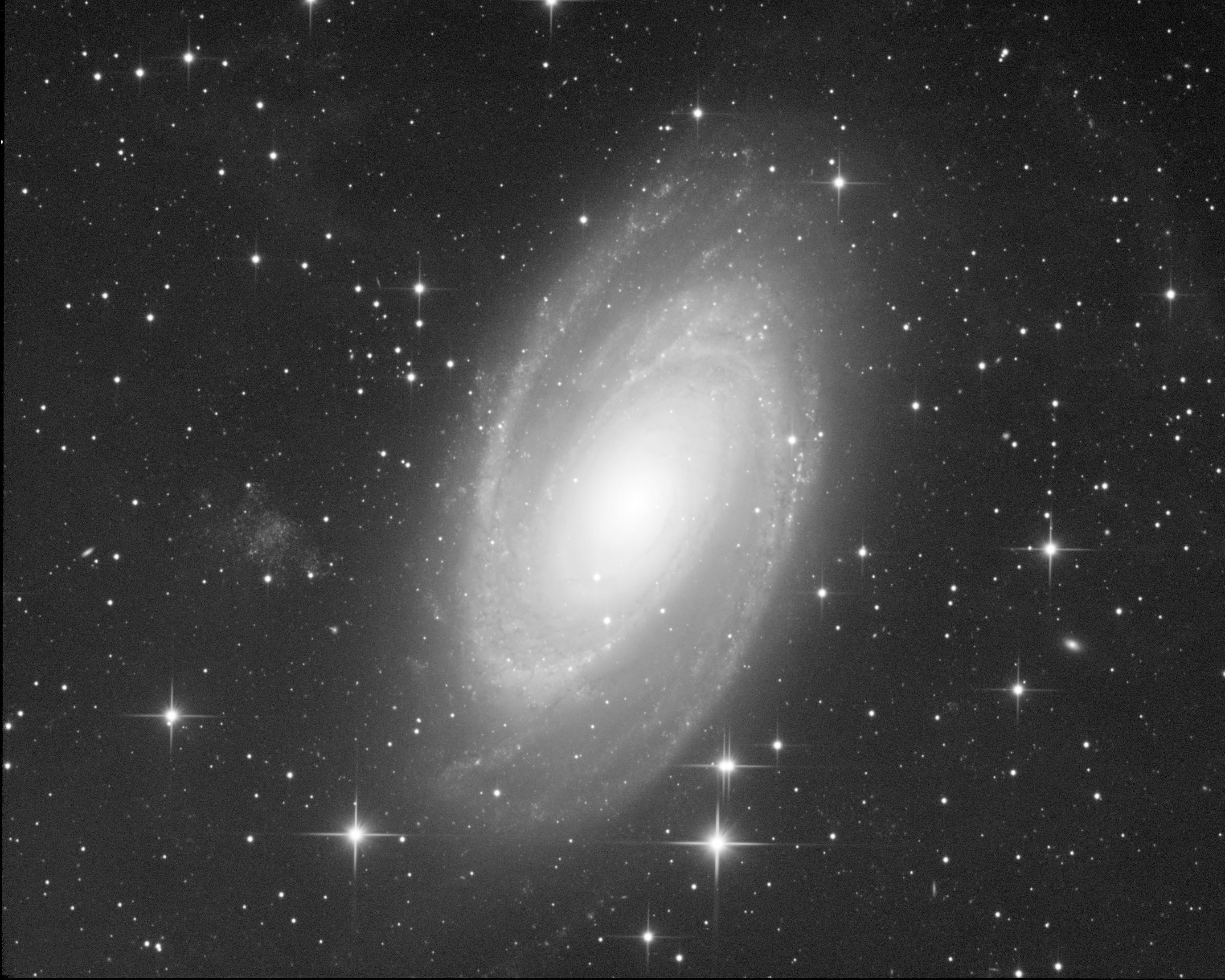 M81 M81_ifn