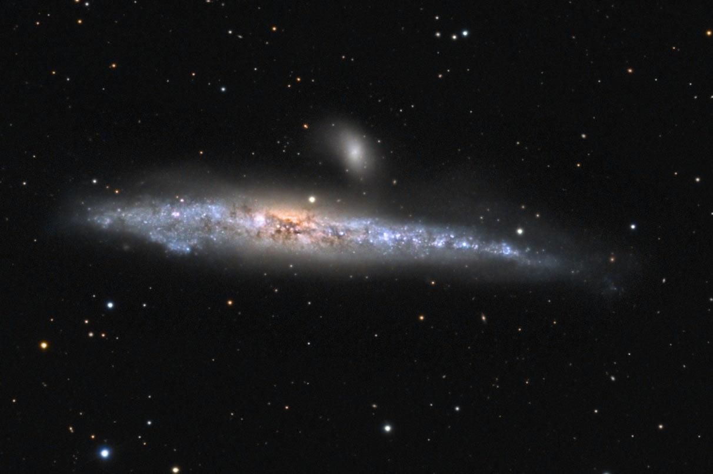 Die Nadel, NGC4565 - reprise de la baleine NGC4631_B_O_WSN_asin_us2019crop