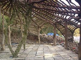 construccion de una una chabola pa'fliparrr 20051005_1
