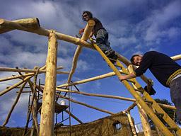 construccion de una una chabola pa'fliparrr Ladder