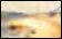 Les news d'Amaz' - Page 38 Peinture_indice