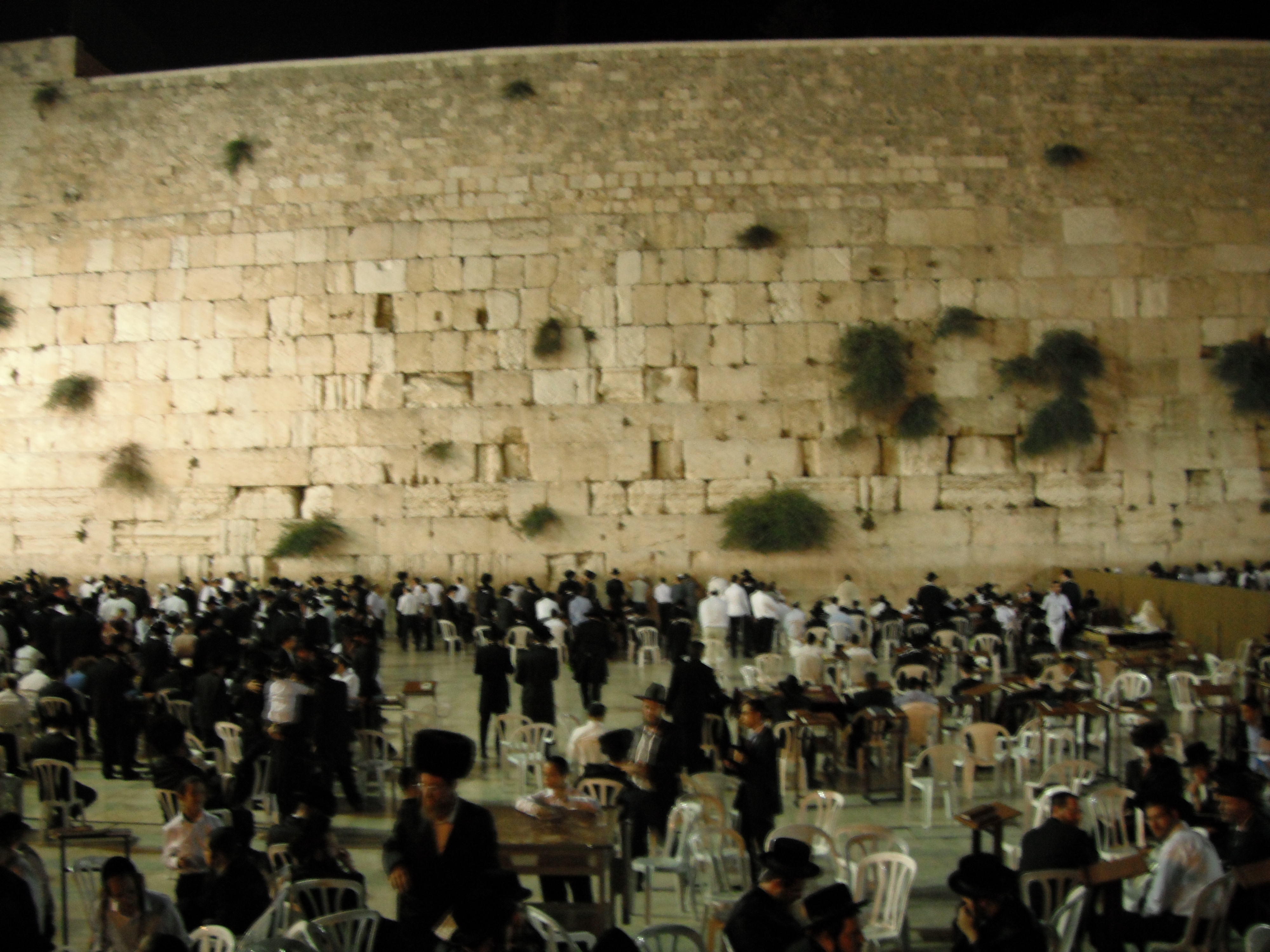 Proche-Orient - Page 7 Wailing-wall