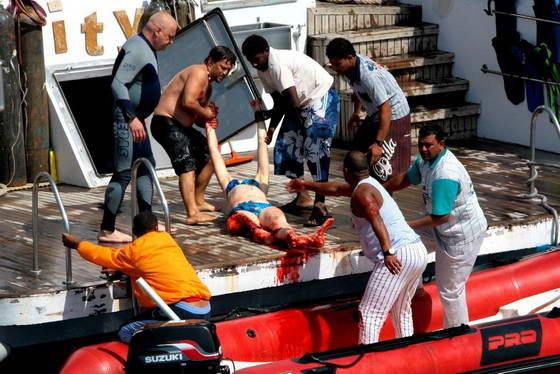валтея - Акулы убийцы ( фото и видео ). Egypt