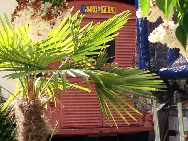 Service Incendie St. Martin de Sanzay Rv19ev