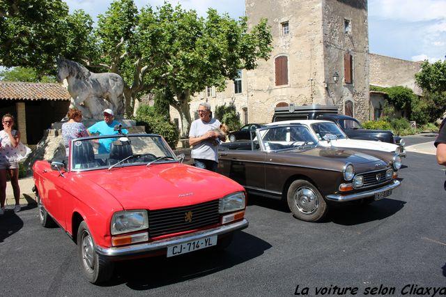 Balade Camargue Alpilles Ascension 2014 T887gt