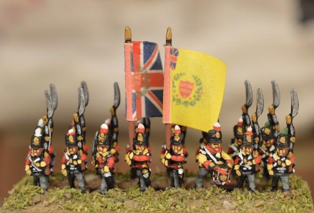 Projet Waterloo en 6mm Mlky6m