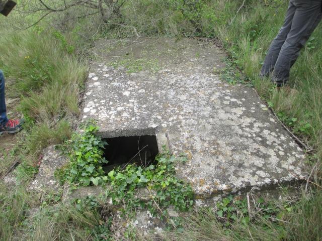Bunkers sur la colline du Roucan-Marcorignan (11) X7tjoh
