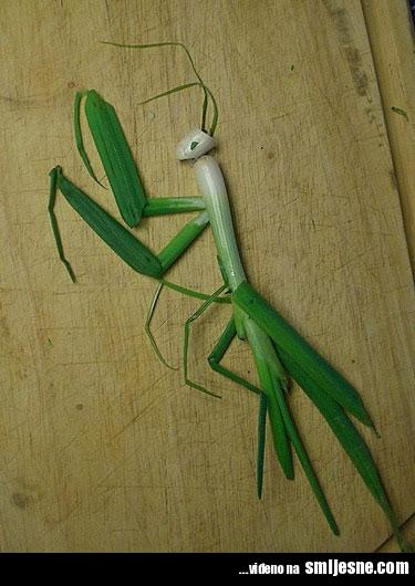 Čime bi  udarili forumaša iznad ? - Page 7 Funny-praying-mantis-spring-onions-art