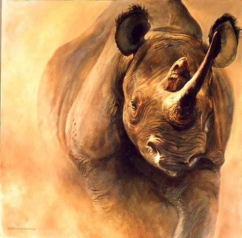Foto Abecedario!!!! - Página 2 Rinoceronte