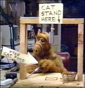 Une nouvelle idée... - Page 2 Alf-cat