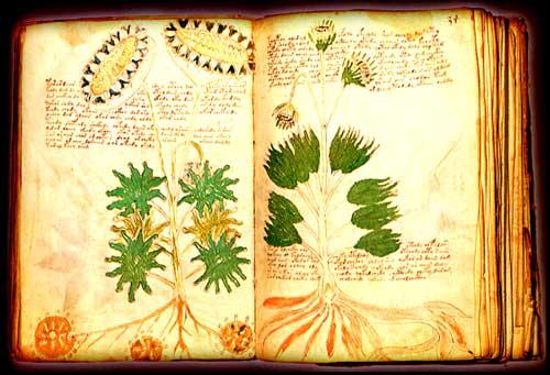 El Manuscrito Voynich - Realidad o Engano? El_manuscrito_voynich_