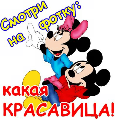 ВОСТОЧНО-ЕВРОПЕЙСКАЯ ОВЧАРКА ВЕОЛАР ЦАРИЦА ДОНА - Страница 3 Smotri_na_fotku-kakaja_krasavica