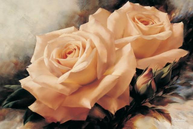 Marceline voit une rose Rosesthe