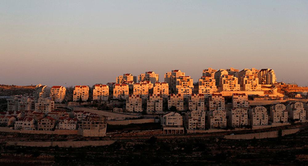 Palestina: Violencia ejercida por Israel en la ocupación. Respuestas y acciones militares palestinas. - Página 17 Manar-010683900152304358110