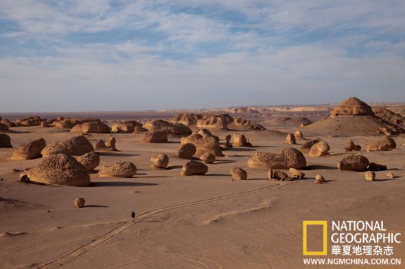 Valle  de las ballenas -Wadi Al-Hitan F201008191546114466552622