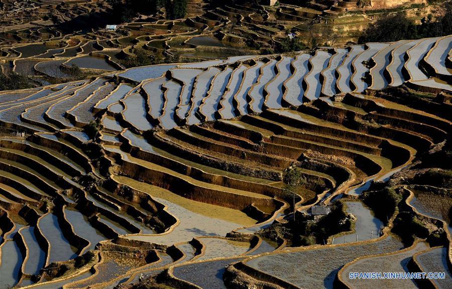 Terrazas de arroz en Yunnan (China). 135001195_14525785837011n